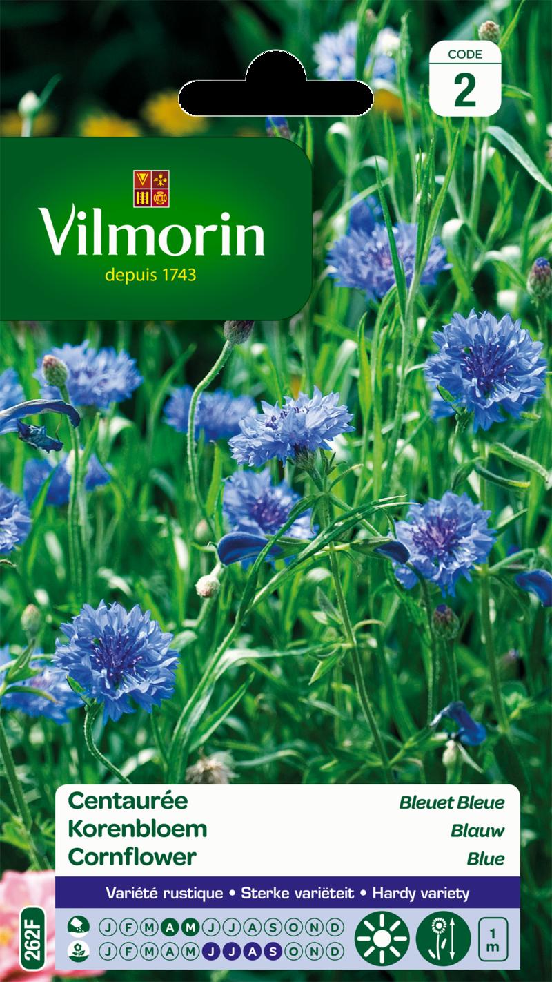 centauree bleuet bleu vilmorin graine semence sachet massif - Voir en grand