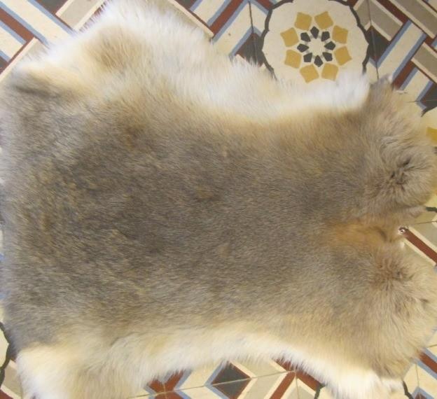 peaux de lapin - Peaux et coussins  - La Petite Boutique - Voir en grand