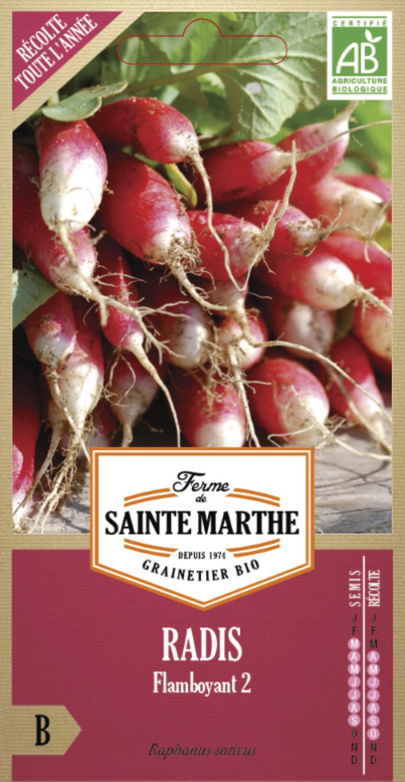 radis flamboyant bio ferme de sainte marthe graine semence potager sachet semis - Voir en grand