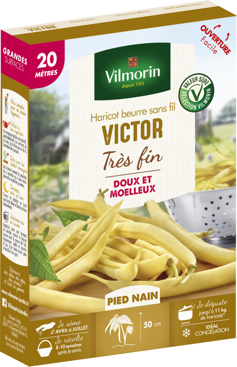 haricot nain mangetout beurre victor vilmorin graine semence potager boite semis - Voir en grand