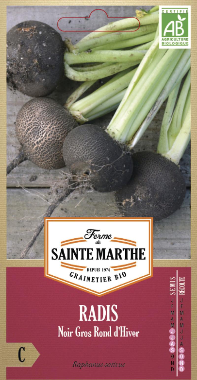 radis noir gros rond d'hiver bio ferme de sainte marthe graine semence potager sachet semis - Voir en grand