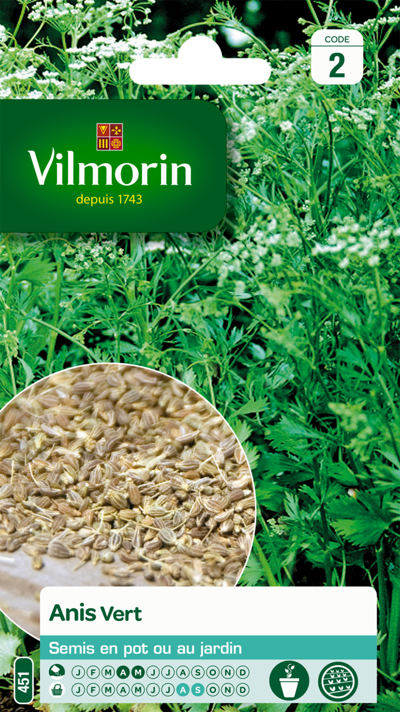 anis vert vilmorin graine semence aromatique potager sachet semis - Voir en grand