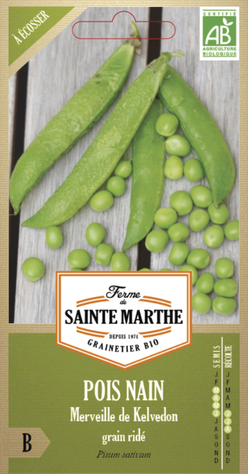 pois nain merveille de kelvedon grain ridé bio la ferme de sainte marthe graine semence potager - Voir en grand