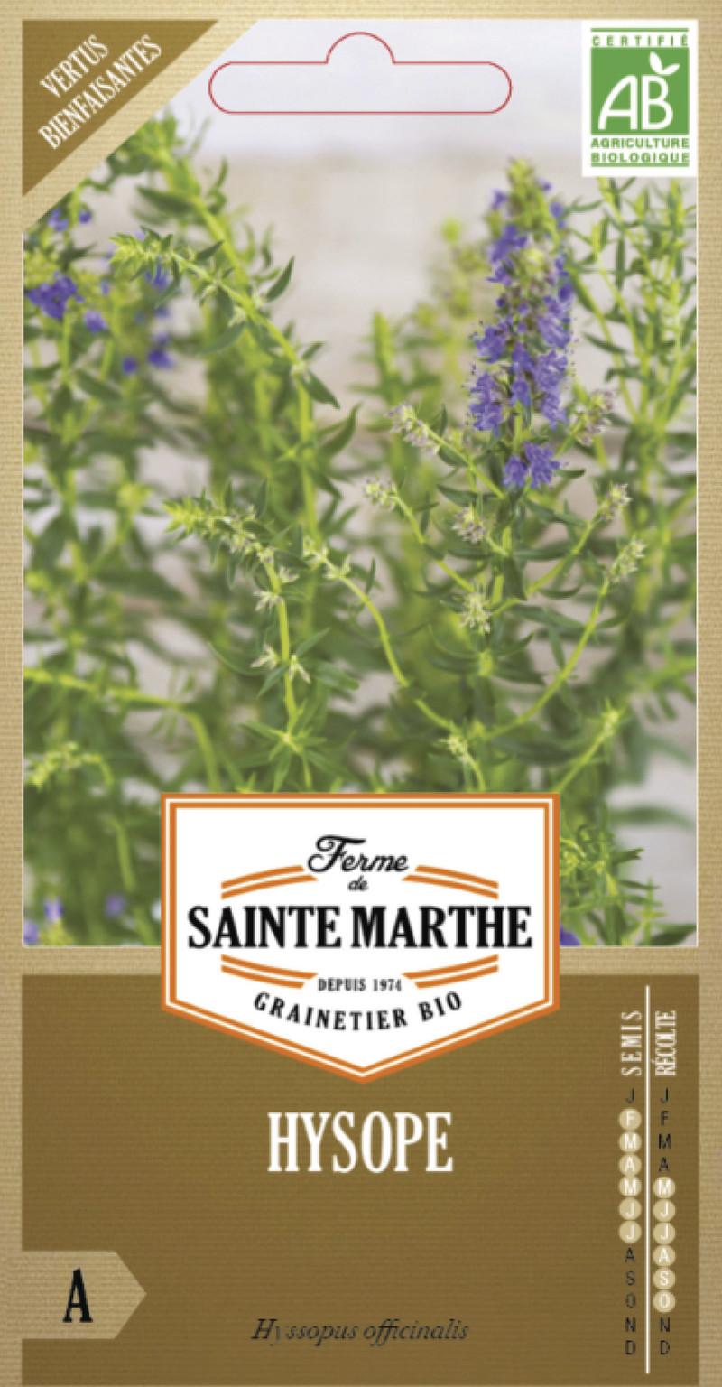 hysope bio la ferme de sainte marthe graine semence aromatique sachet semis - Voir en grand
