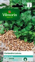 coriandre cultivee vilmorin graine semence aromatique potager sachet semis