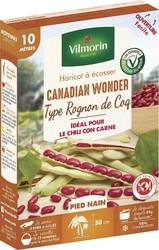 haricot nain a ecosser canadian wonder type rognon de coq vilmorin graine semence potager boite