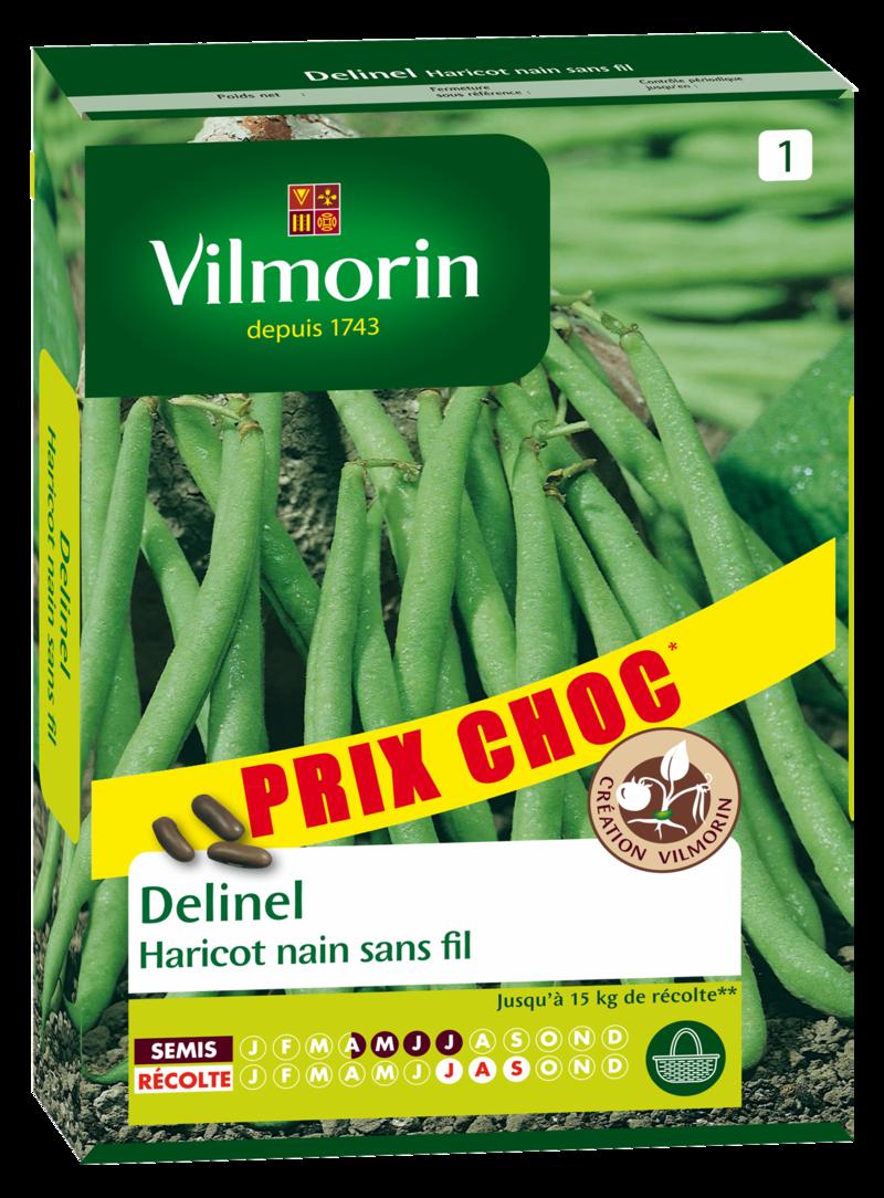 haricot nain a filet sans fil delinel vilmorin graine semence potager semis boite - Voir en grand