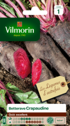 betterave crapaudine vilmorin graine semence potager sachet semis