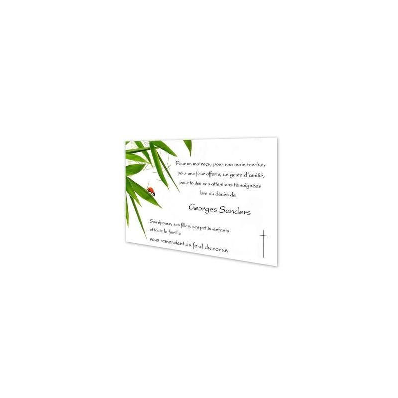 carte deuil condoléance, coccinelle rouge, branche bamboo, amalgame imprimeur grenoble - Voir en grand