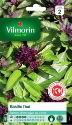 basilic thaï vilmorin graine semence aromatique potager sachet semis - Voir en grand
