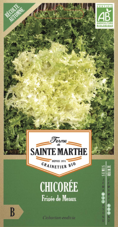 chicoree frisee de meaux bio la ferme de sainte marthe graine semence potager sachet semis - Voir en grand
