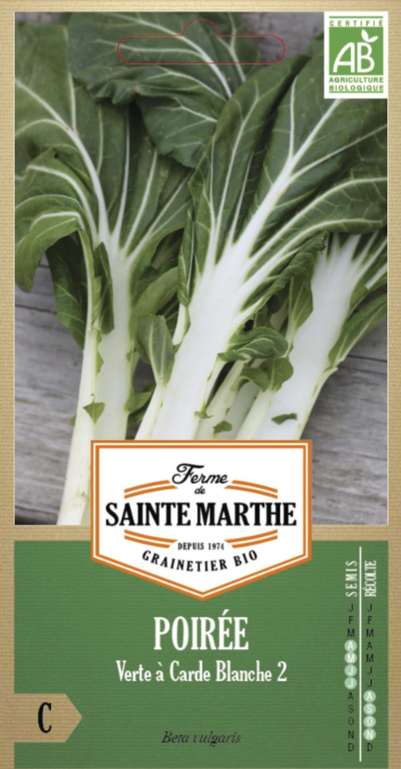 poiree verte a carde blanche 2 blette bette bio la ferme de sainte marthe graine semence potager - Voir en grand