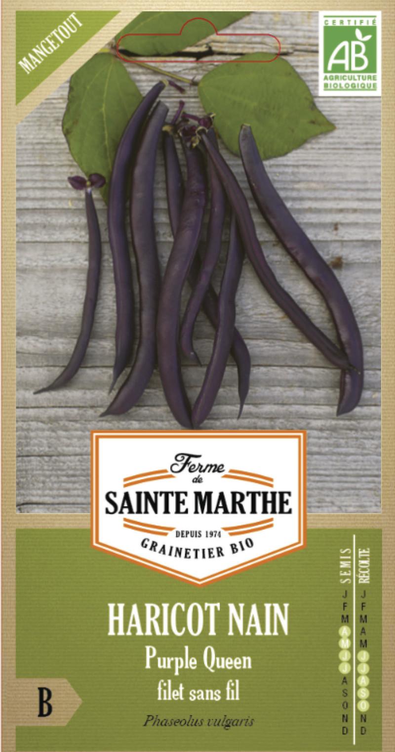 haricot purple queen nain violet mangetout bio ferme de sainte marthe graine semence potager boite - Voir en grand
