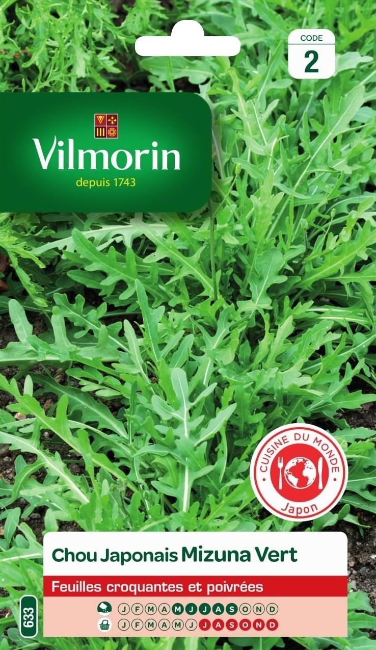 chou japonais mizuna vert cuisine du monde vilmorin graine semence potager sachet semis - Voir en grand