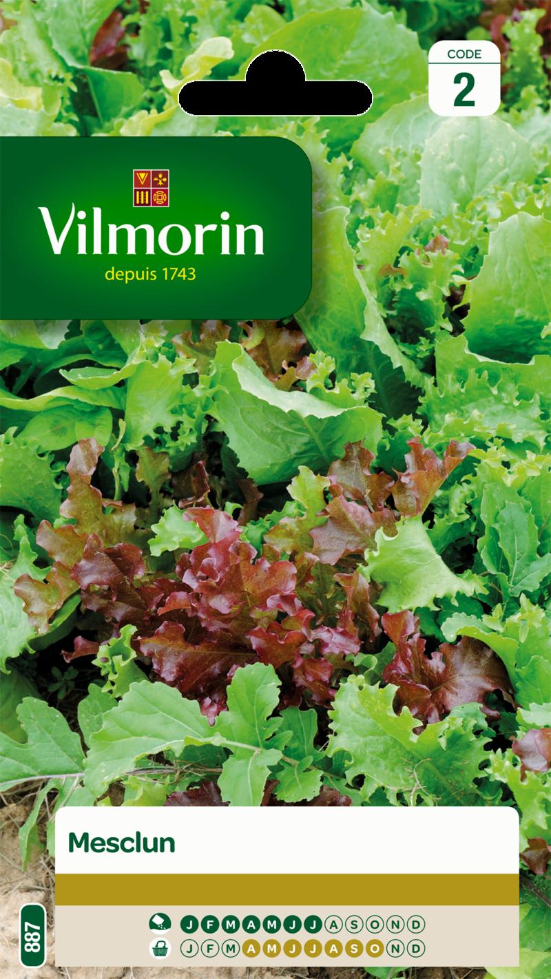 mesclun vilmorin graine semence potager semis sachet - Voir en grand