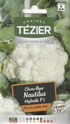 chou fleur nautilus hybride f1 tezier graine semence potager sachet semis