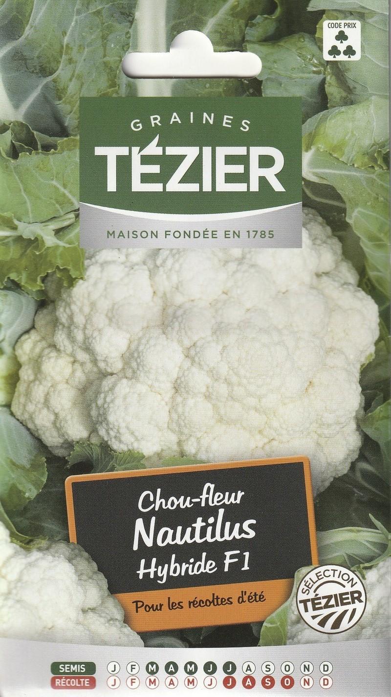 chou fleur nautilus hybride f1 tezier graine semence potager sachet semis - Voir en grand