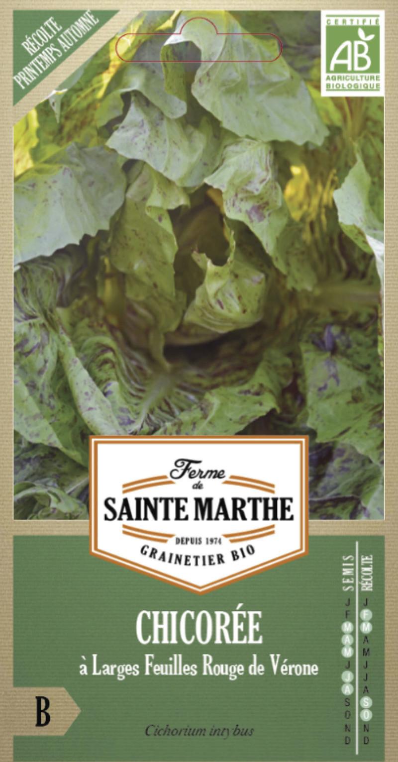 chicoree a feuilles rouge de verone bio ferme de sainte marthe graine semence potager sachet semis - Voir en grand