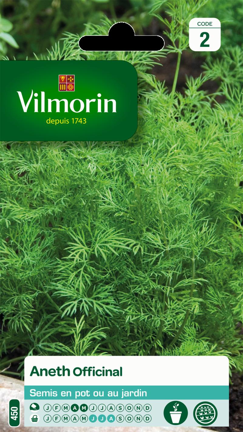 aneth officinal vilmorin graine semence aromatique potager sachet semis - Voir en grand