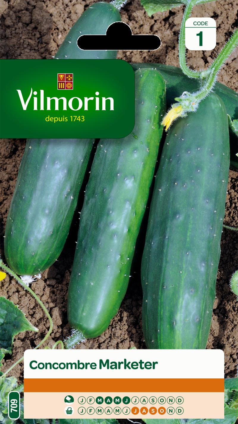 concombre marketer vilmorin graine semence potager semis sachet - Voir en grand