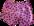 Short de Patinage Ref XPshortS01 Taille S - SHORTS DE PATINAGE - GREEN et GLACE Patinage