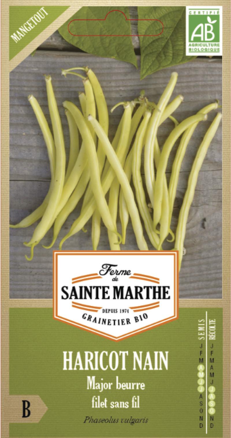 haricot major beurre nain filet sans fil bio la ferme de sainte marthe graine semence potager boite - Voir en grand