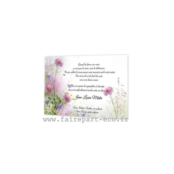 Amalgame imprimerie grenoble, Remerciement décès, carte de deuil, fleurs sauvages, Algue-Marine - Voir en grand