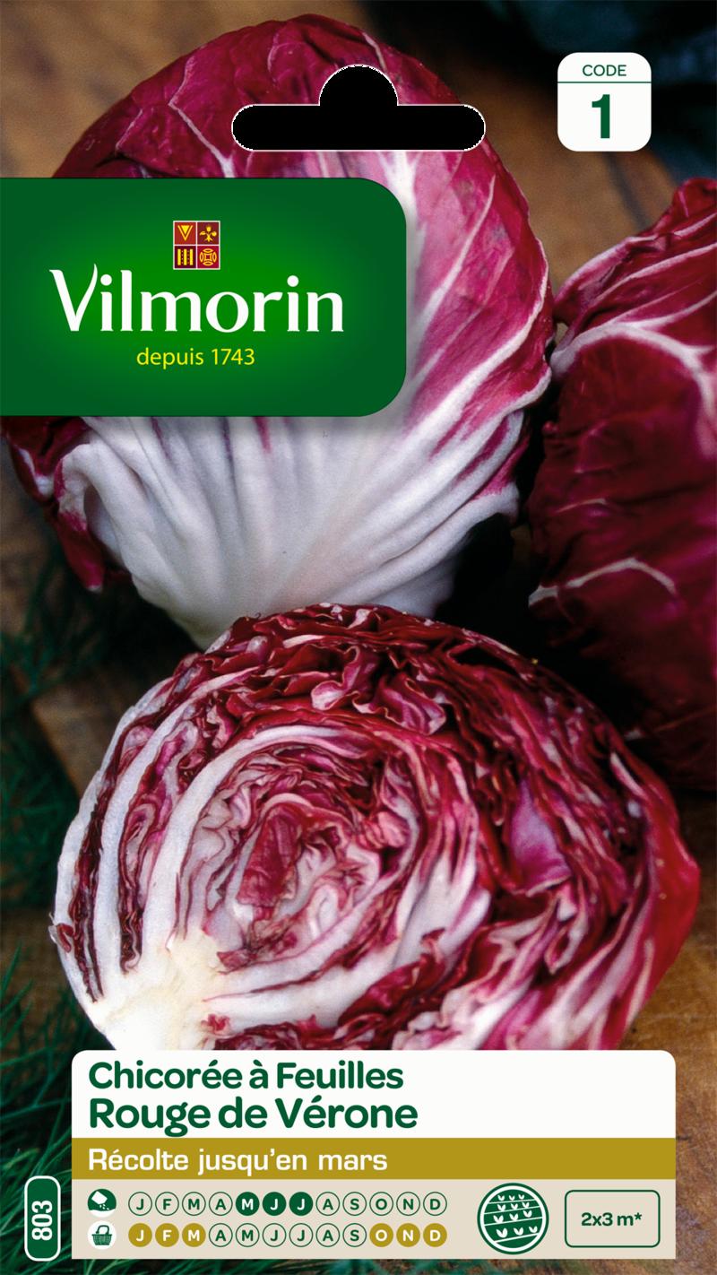 chicoree a feuilles rouge de verone vilmorin graine semence potager semis sachet - Voir en grand