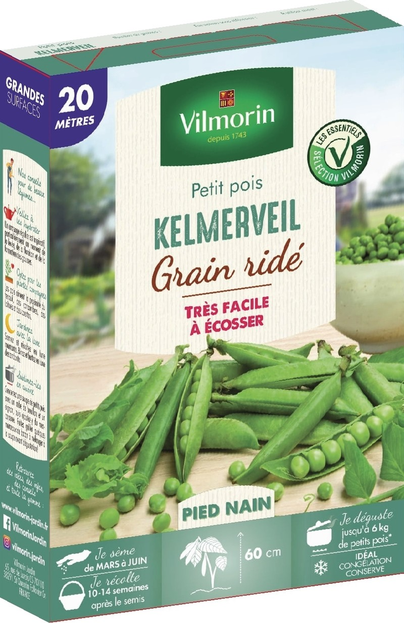 pois nain a grain ride kelmerveil vilmorin graine semence potager boite semis - Voir en grand