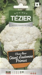 chou fleur geant d'automne primus tezier graine semence potager sachet semis