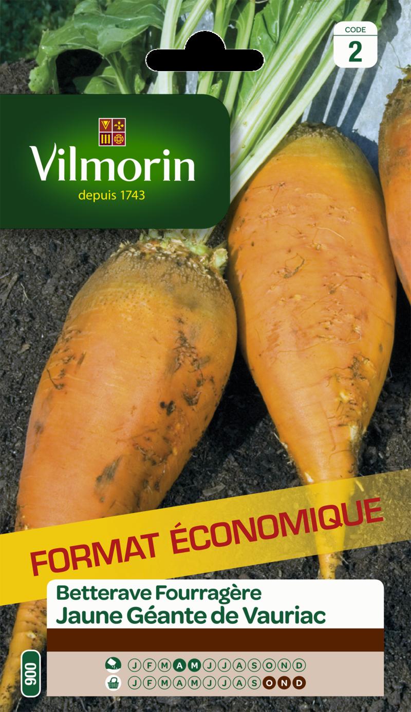 betterave fourragere jaune geante de vauriac vilmorin graine semence fourragere sachet grand modele - Voir en grand