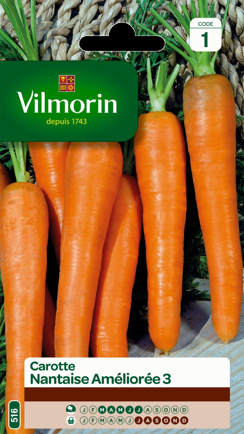 carotte nantaise amelioree 3 vilmorin graine semence potager sachet semis - Voir en grand