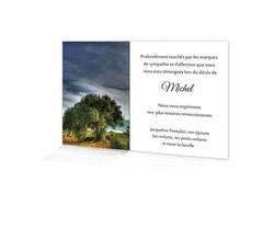 carte remerciement décès, faire part condoléances, arbre plein nature, amalgame imprimeur grenoble - Voir en grand