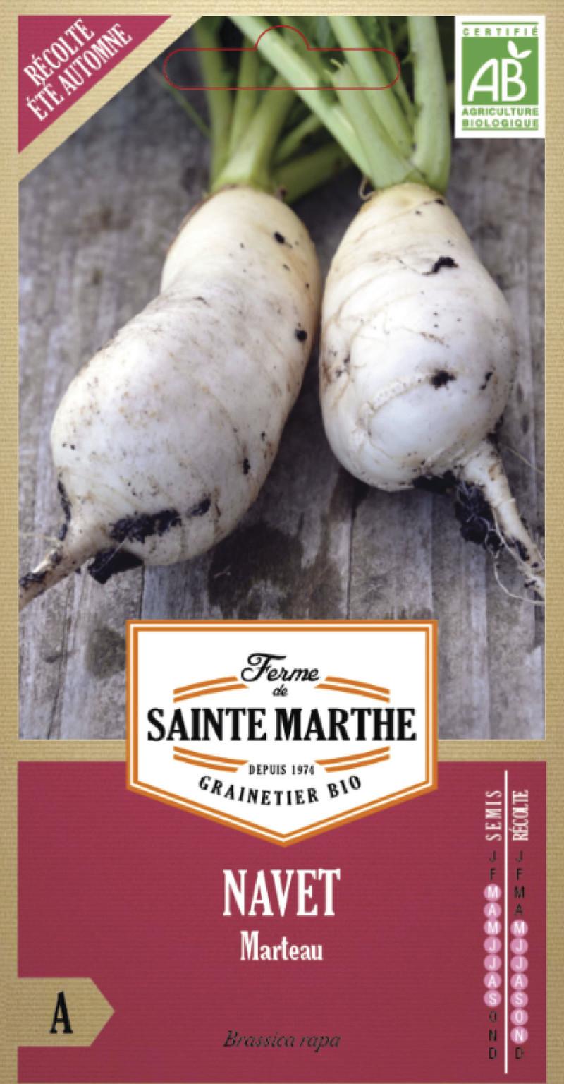 navet marteau bio la ferme de sainte marthe graine semence potager sachet semis - Voir en grand
