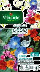 melange fleurs grimpantes mon jardin deco vilmorin graine semence melange massif