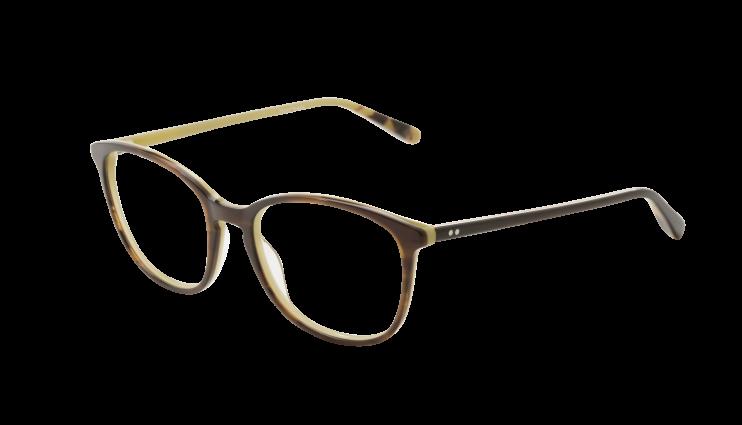 e42e7e41a453a0 Les lunettes