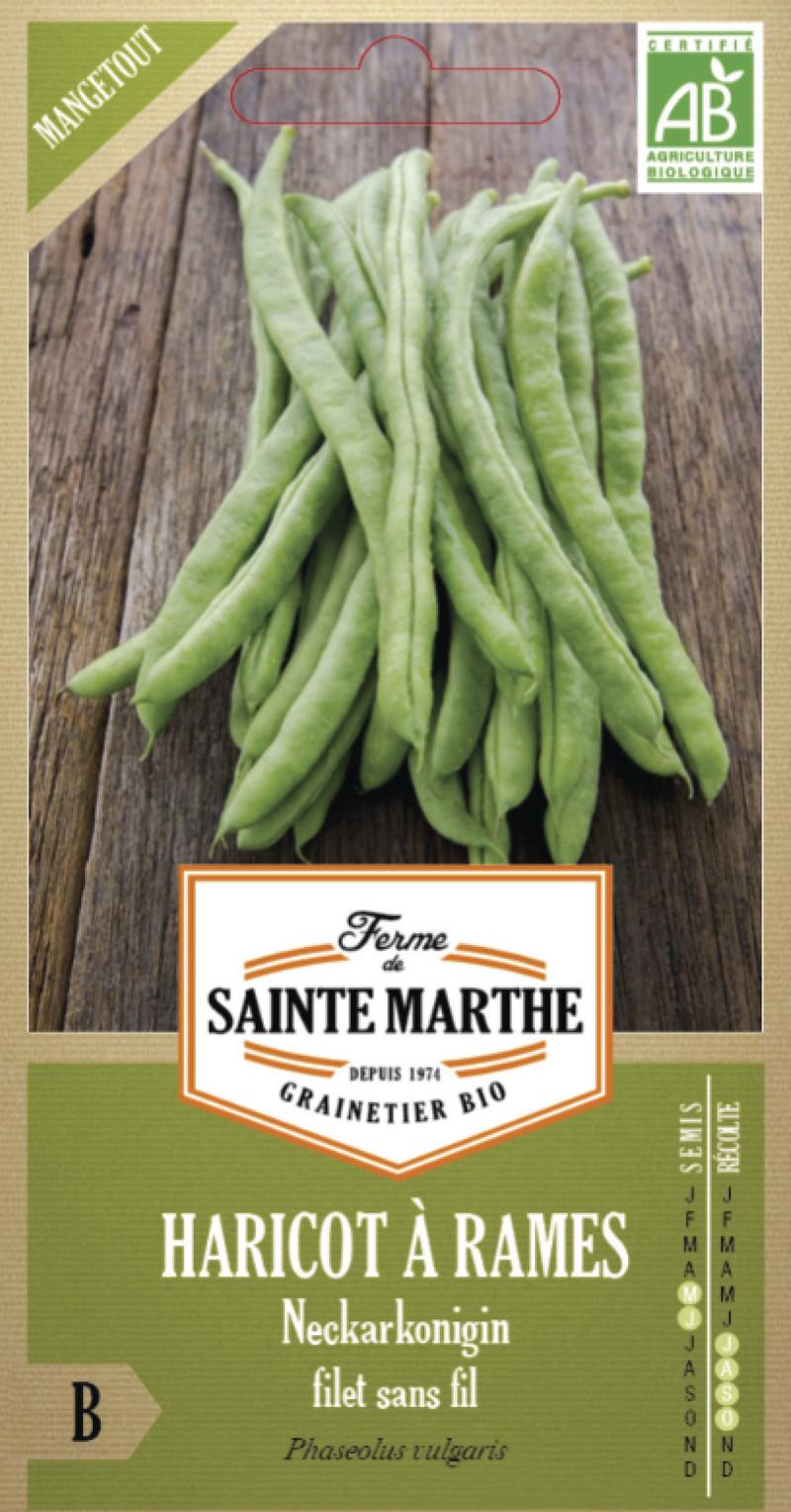haricot a rames neckarkonigin mangetout bio la ferme de sainte marthe graine semence potager boite - Voir en grand