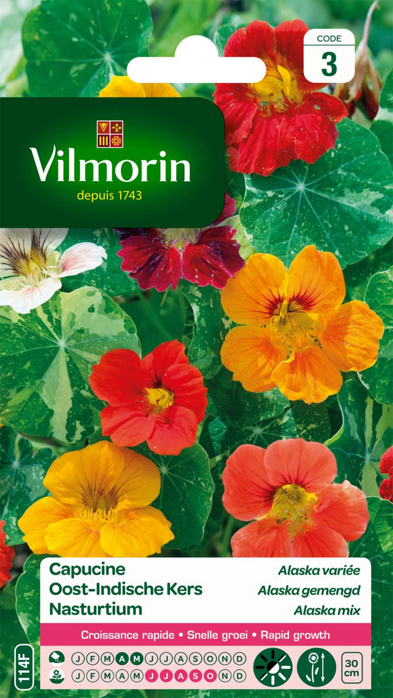 capucine alaska variee vilmorin graine semence sachet massif - Voir en grand