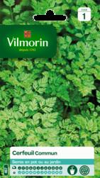 cerfeuil commun vilmorin graine semence aromatique potager sachet semis