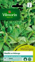 basilic en mélange vilmorin graine semence aromatique potager sachet semis - Voir en grand