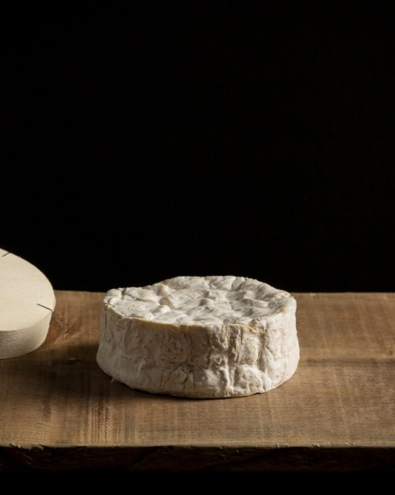 Camembert du terroir du Pays-d'Auge -  - Fromagerie Philippe Olivier - Voir en grand