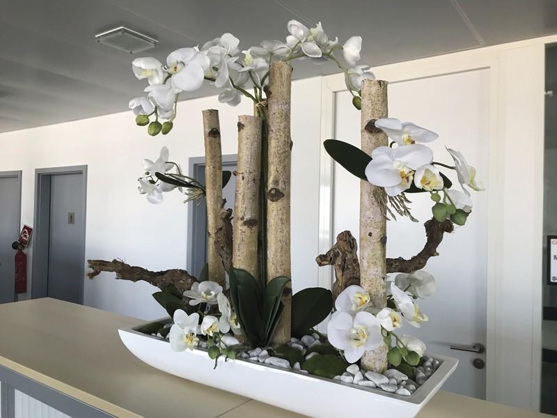 Composition orchidées - Voir en grand