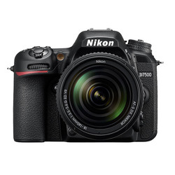 NIKON D7500 -  NIKON (Agent Spécialiste) - Photo Quaranta - Voir en grand