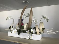 Composition d'orchidées dans des bureaux