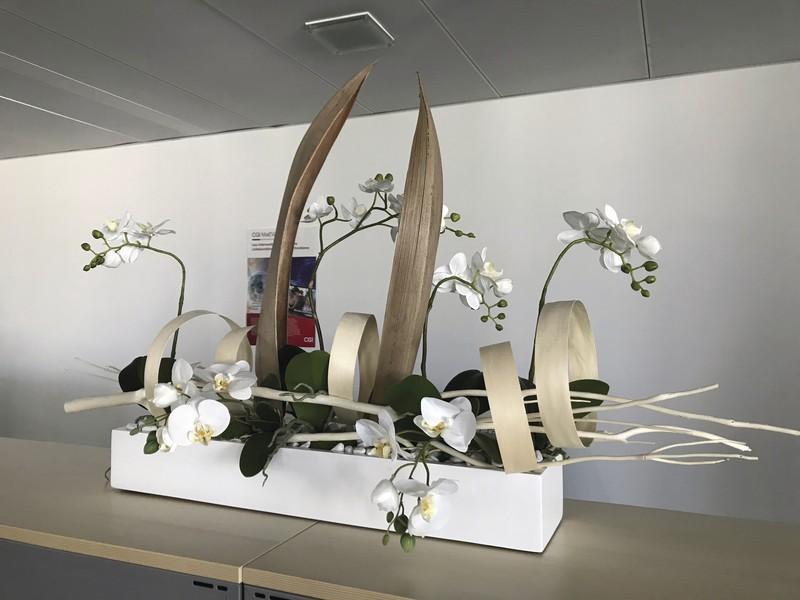 Composition d'orchidées dans des bureaux - Voir en grand