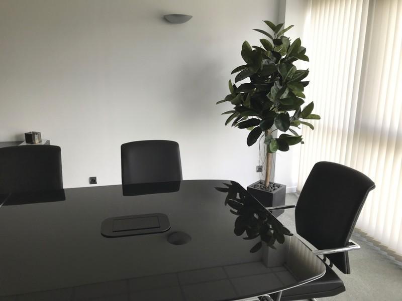 Plante artificielle dans une salle de réunion - Voir en grand