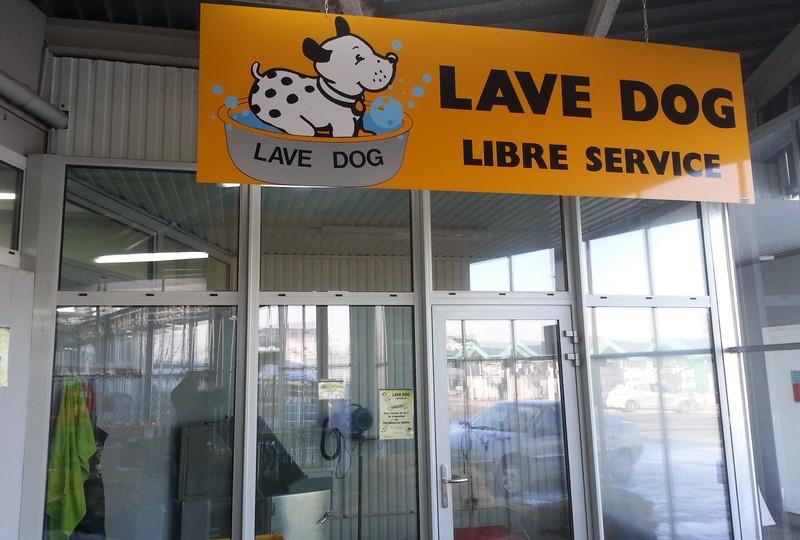 Lave dog - MAFRA Point Vert dans les Vosges - Voir en grand