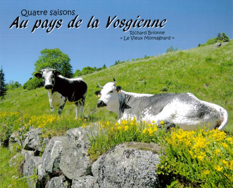 4 SAISONS AU PAYS DE LA VOSGIENNE - Librairie des Vosges - LE CHIQUITO MAISON DE LA PRESSE  - Voir en grand