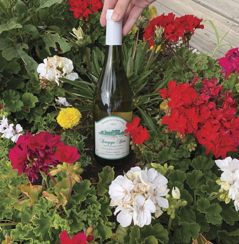 Bourgogne Blanc Carron - Blancs - DISTRI ABOUT - Voir en grand