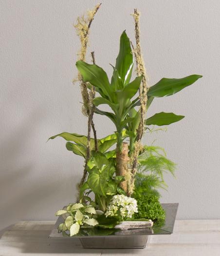 Zen - Jardin paysagé - Fleurs Vetter... Votre fleuriste à Thann - Voir en grand